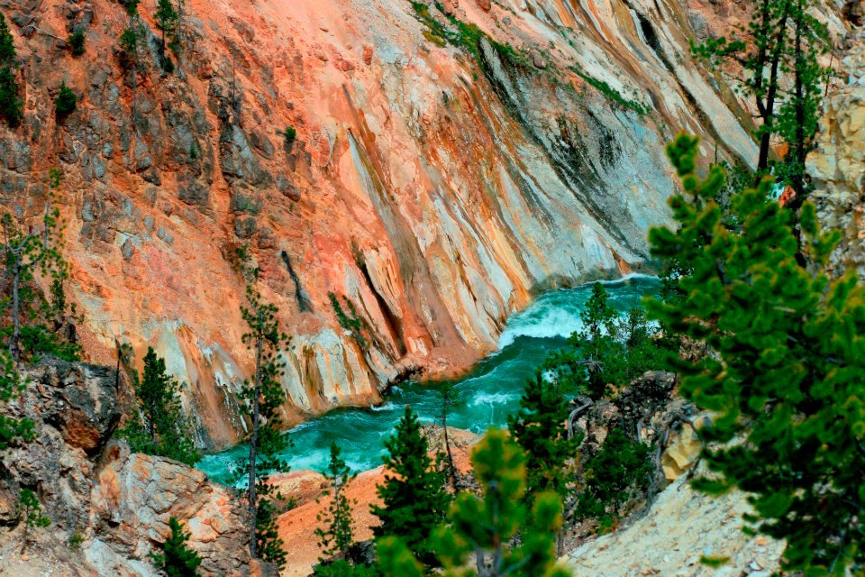 Grand Teton Canyon River Lola Harkins