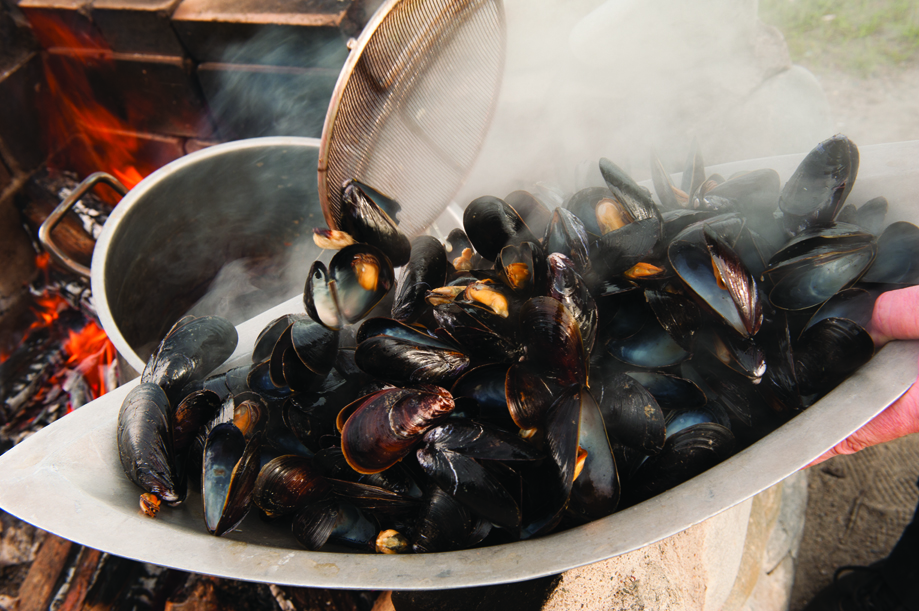 Steaming mussels in Nova Scotia